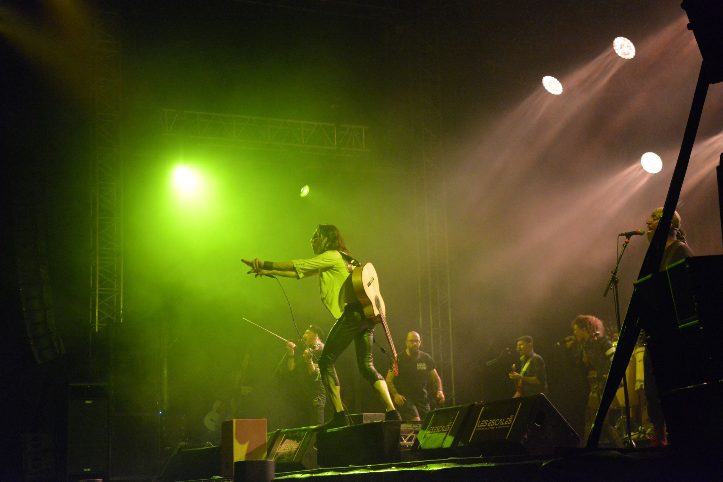 Gogol Bordello (2)