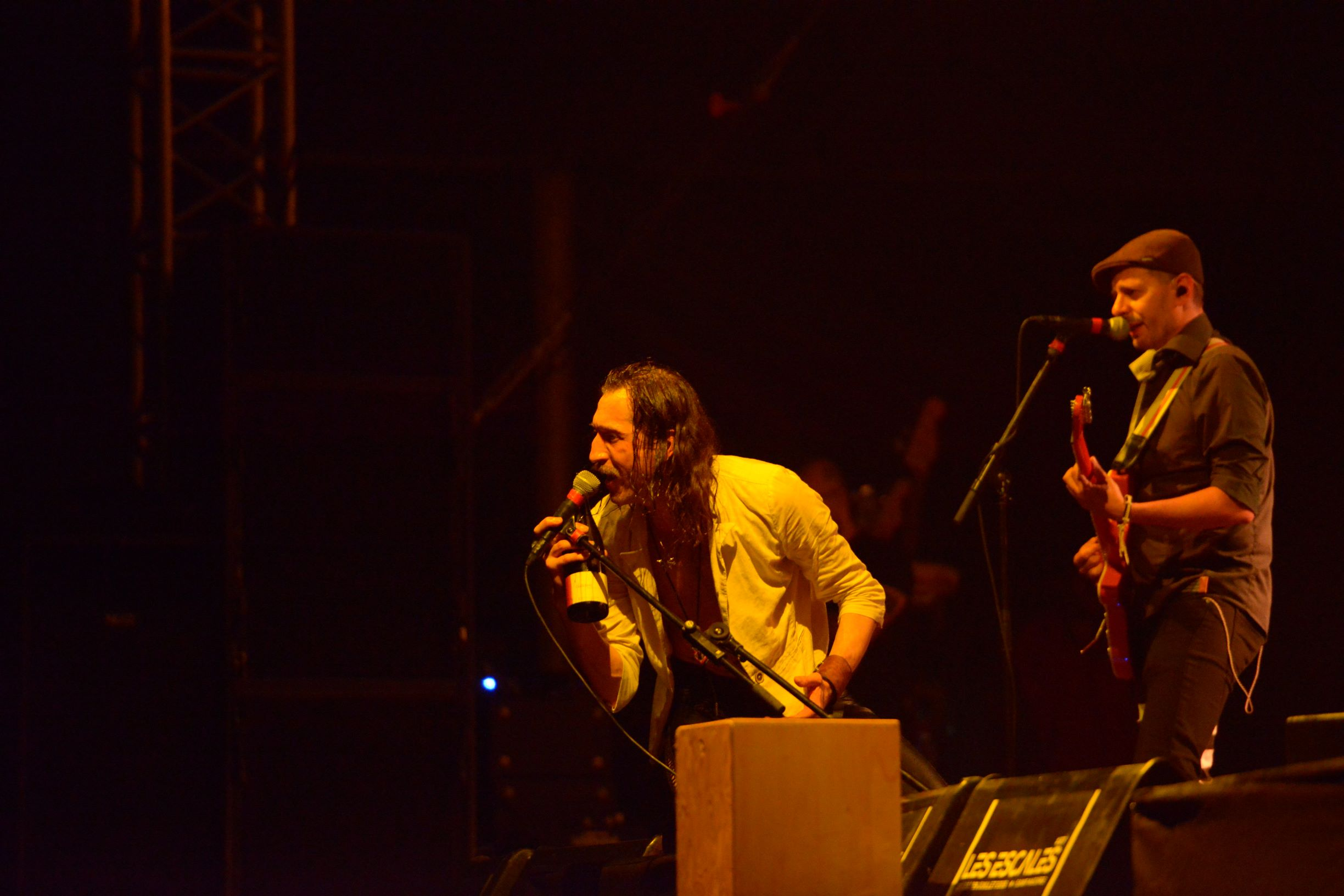 Gogol Bordello (4)