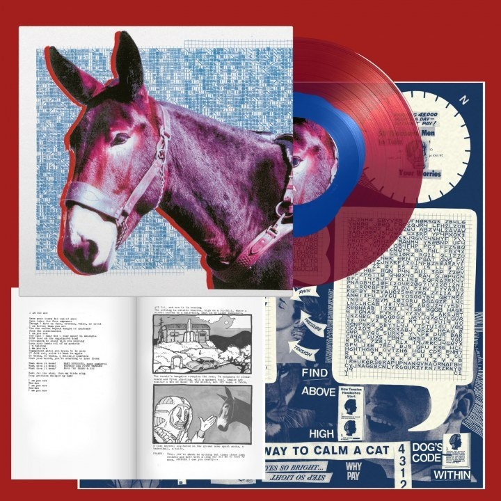 Protomartyr pochette du vinyle collector Ultimate Success Today